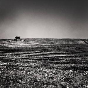 Landscape - Sicilia n. 12 - 2015
