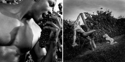 Wine 2 calendar